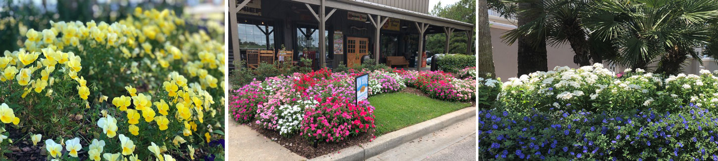 Commercial Landscape Services - Mobile, Alabama