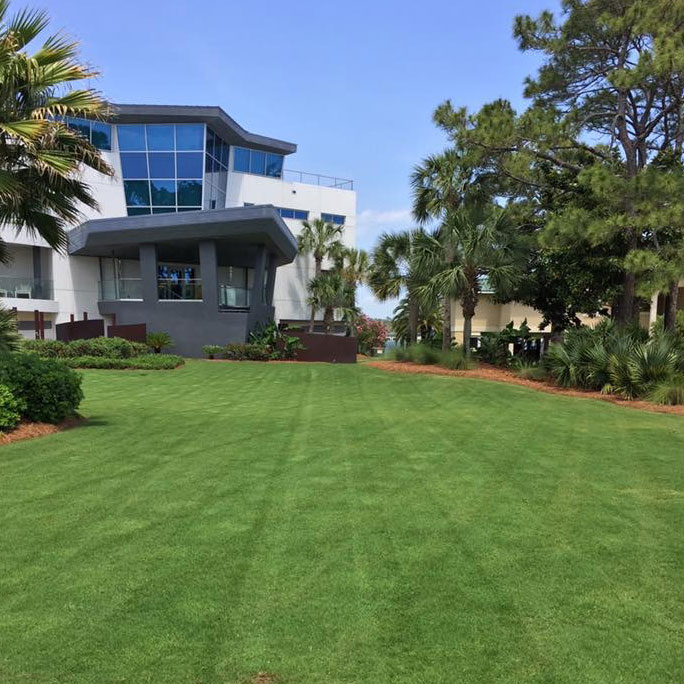 Turf and Lawn Care